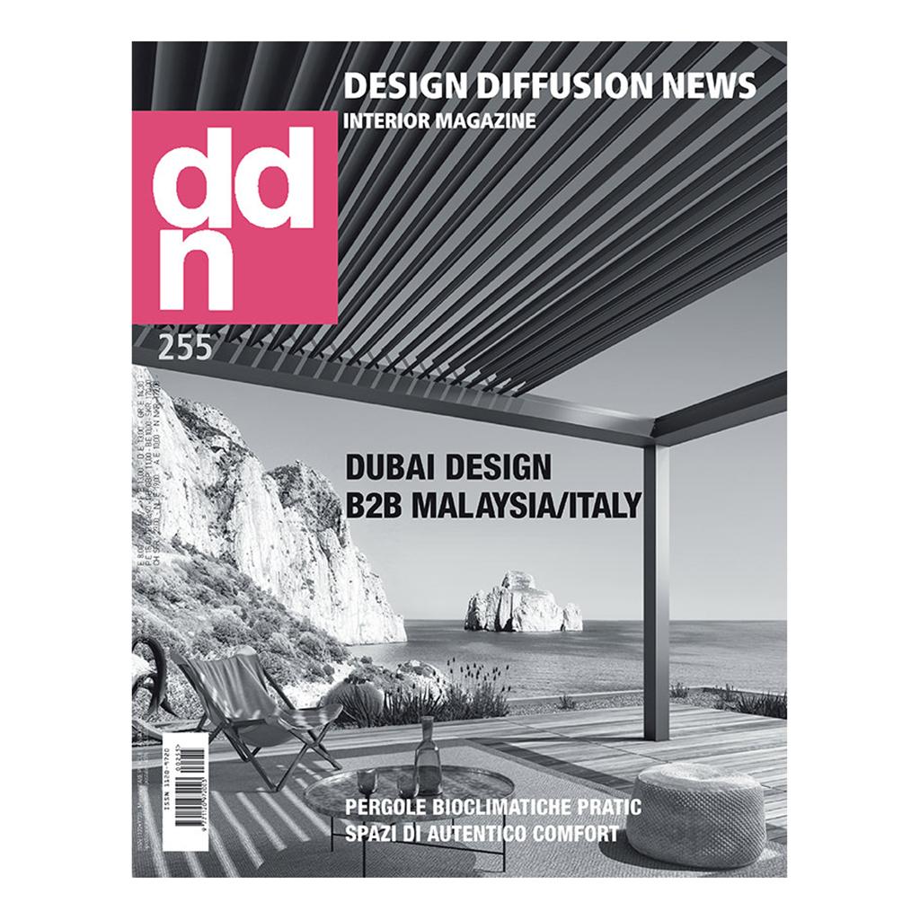 DDN 255 | My interview